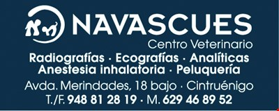 NAVASCUES